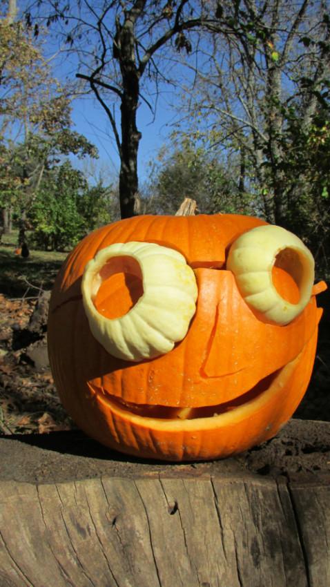 tammie's pumpkin | movitabeaucoup.com
