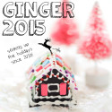 ginger 2015 // movita beaucoup
