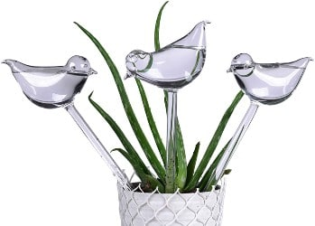 E-KAY 3 Pack Plant Waterer Self Watering Globes