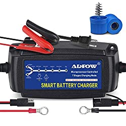 ADPOW Automatic Smart Battery Charger