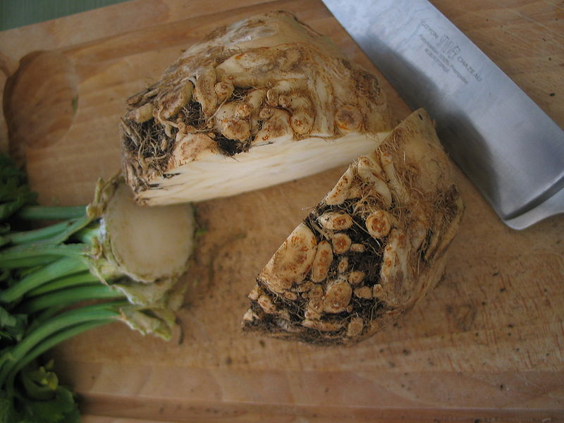 A sliced celeriac with the shoots removed.