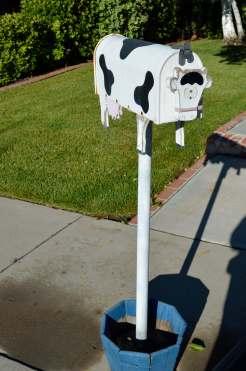 Mailbox 24
