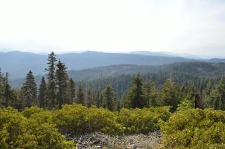 Sequoia National Park 07