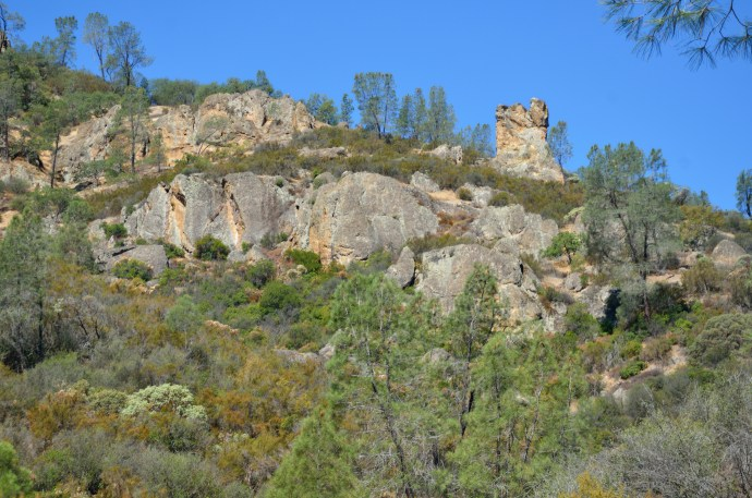 Pinnacles 22