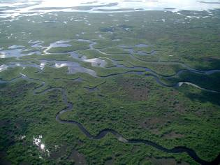 Frome the Facebook page for Everglades National Park.