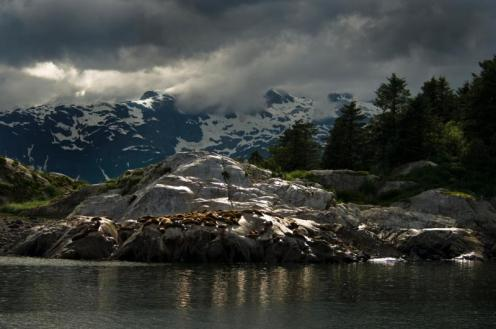 From the Glacier Bay National Park Website.