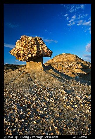 Photo courtesy of Terra Galleria. www.terragalleria.com.