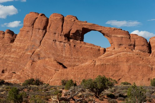 Skyline Arch. Photo by Neal Herbert. From the Park website.