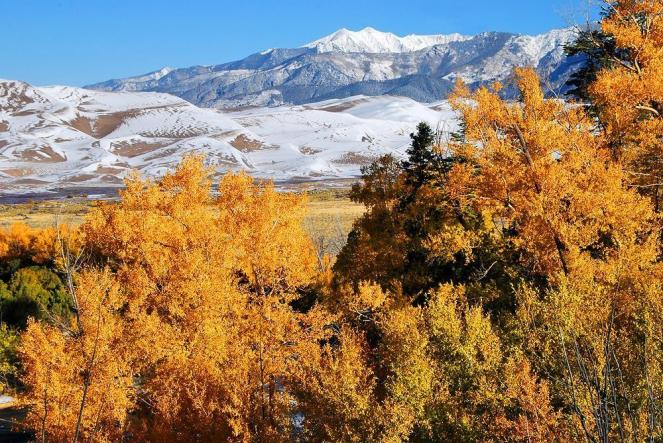 Fall colors have arrived at the Great Sand Dunes National Park. Tweeted by the US Department of the Interior 10/18/13.