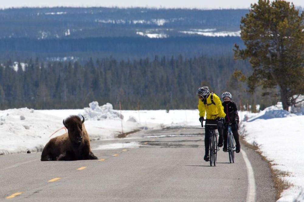 Taken at Yellowstone National Park, and tweeted by the US Department of the Interior, 4/13/14.