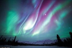 The Northern Lights above Denali National Park