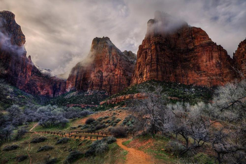 A foggy Zion National Park. Photo by Jay Wanta. Tweeted by the US Department of the Interior, 4/23/15.