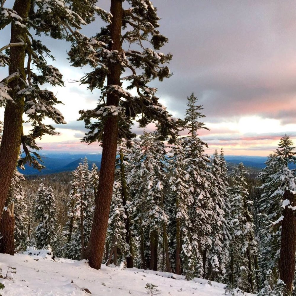 Good news for every person in drought-stricken California: it's snowing in the mountains!  Picture is of Lassen National Park. Tweeted by the US Department of the Interior 11/5/15.