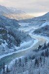 Denali NP 37 – winter