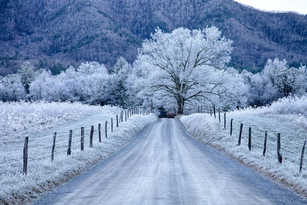 A perfect winter morning at Great Smoky Mountains National Park. This gorgeous shot was taken at the park's Sparks Lane in Cades Cove. Photo by Christopher Ewing. Posted on Tumblr by the US Department of the Interior, 12/23/15.