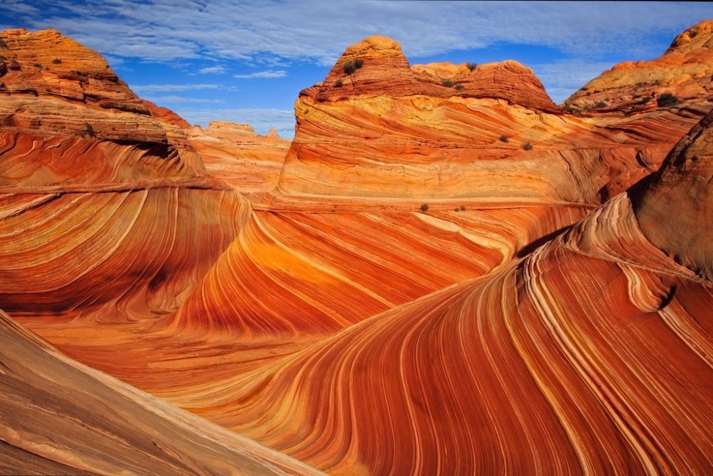One of the most beautiful geologic formations in the world: The Wave in Arizona. Photo by Phillip Noll. Tweeted by the US Department of the Interior,