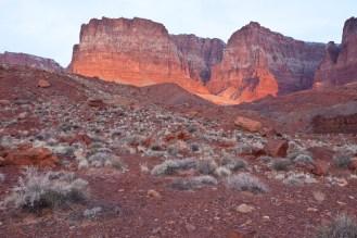 Vermillion Cliffs NM 07