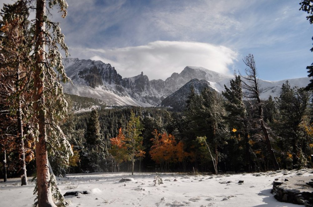 Nevada's Great Basin National Park, where it's still winter. Photo by Karen Robinson. Tweeted by the US Department of the Interior, 2/29/16.