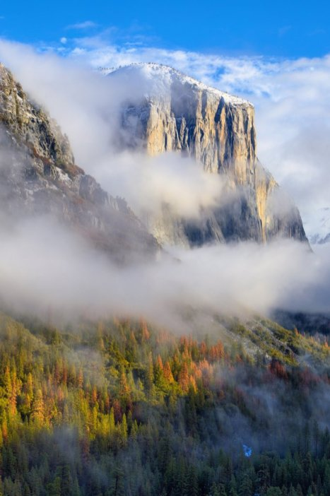 El Capitan peeks through the fog in California's Yosemite National Park. Photo by Vincent James. Tweeted by the US Department of the Interior, 2/3/16.