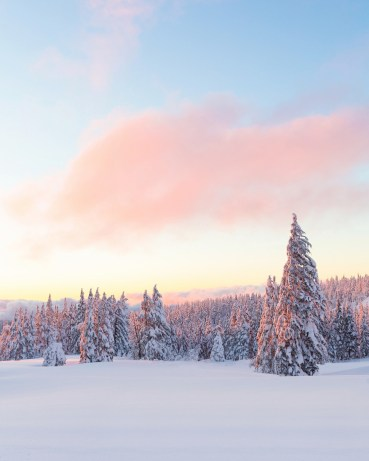 "The soft colors of sunset reflect off the snow, creating this breathtakingly beautiful shot from Crater Lake National Park in Oregon. Christian Schaffer snapped this pic a few months ago when the park's snowpack was over 8 feet high. Of the experience, she says, ""It was so incredibly beautiful and also incredibly cold – all of our electronics died while we were out there except my one camera battery. The cold was worth it though; one of the most amazing sunsets I've ever seen."" Photo courtesy of Christian Schaffer. Posted on Tumblr by the US Department of the Interior, 3/6/16."