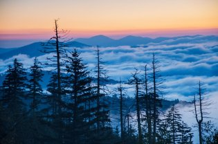 Tennessee's Great Smoky Mountains National Park, seen from above the clouds. Photo by Howard Gutgesell. Tweeted by the US Department of the Interior, 2/25/16.