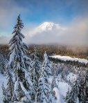 Mount Rainier NP 41 – fog