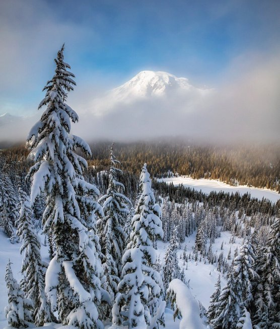 Washington's Mount Rainier National Park, nearly obscured by fog. Photo by Scott Kranz. Tweeted by the US Department of the Interior, 3/28/16.