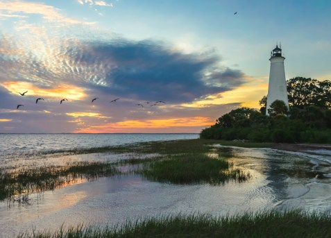 St. Marks National Wildlife Refuge in Florida. One of the oldest wildlife refuges, St. Marks protects coastal marshes, islands and other wetlands that are home to diverse wildlife. Photo by Viktor Posnov. Posted on Tumblr by the US Department of the Interior, 3/22/16.