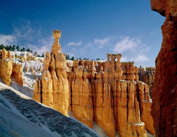 Thor's Hammer in Bryce Canyon National Park. Photo by Ed Cooper. Tweeted by the US Department of the Interior, 3/14/16.
