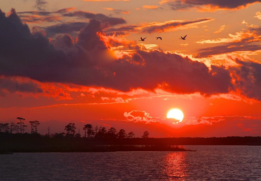 The perfect sunset at Virginia's Back Bay National Wildlife Refuge. Photo by Heather Bautista. Tweeted by the US Department of the Interior, 5/4/16.