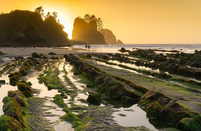 Summer sunsets are the best! Washington's Shi Shi Beach at Olympic National Park. Photo by Christian Loya. Tweeted by the US Department of the Interior, 7/17/16.