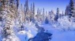 glacier-bay-np-37-snow