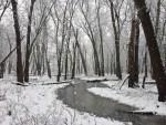 port-louisa-nwr-snow