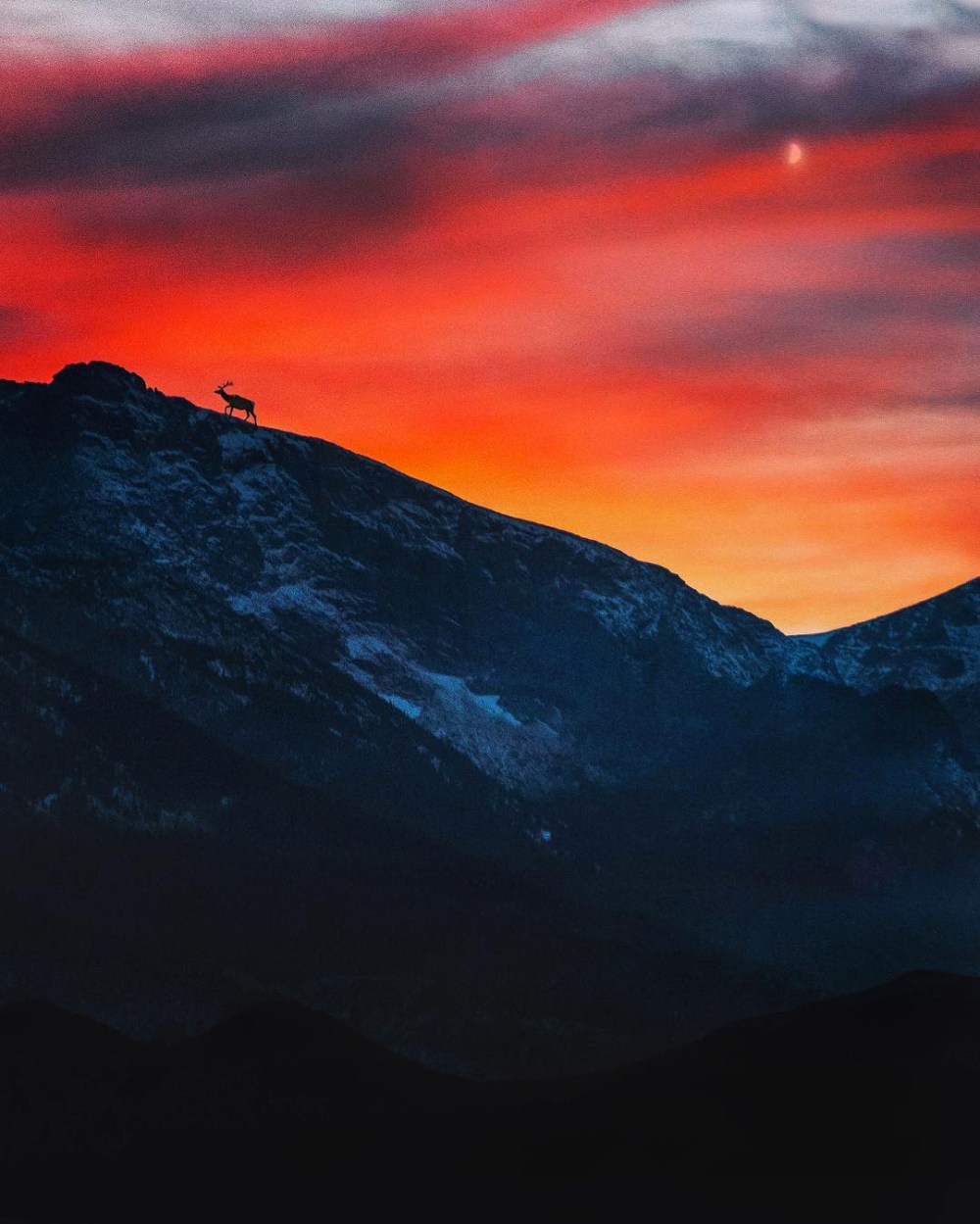 """Rocky Mountain National Park in Colorado encourages you to follow your wild spirit and see what's over the horizon. In any season, the views are epic and the experiences are unforgettable. Stopping to take a picture of one of the most beautiful sunsets he'd ever seen, photographer Brandon Sharpe noticed """"an elk doing his thing"""" and snapped this incredible image. Photo by of Brandon Sharpe. Posted on Tumblr by the US Department of the Interior, 2/11/17."""