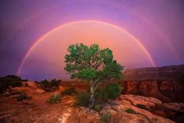 A double rainbow over the Grand Canyon. Photo by Tony Prince. Tweeted by the US Department of the Interior, 3/17/17.