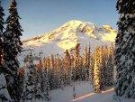 Mt Rainier NP 39 – snow