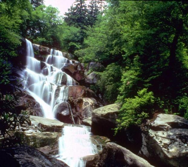 Ramsey Cascades, at 100 feet high, is the tallest waterfall in the park. From the National Park Service website.