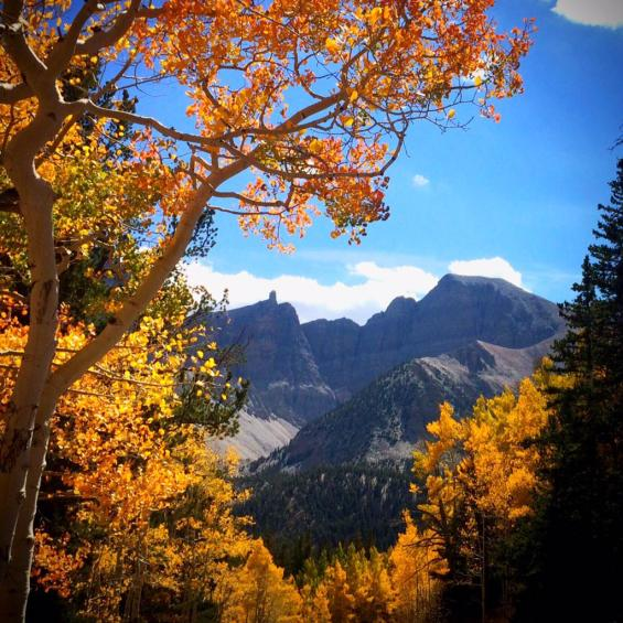 Utah's Great Basin National Park in fall color. Tweeted by the US Department of the Interior, 9/28/15.