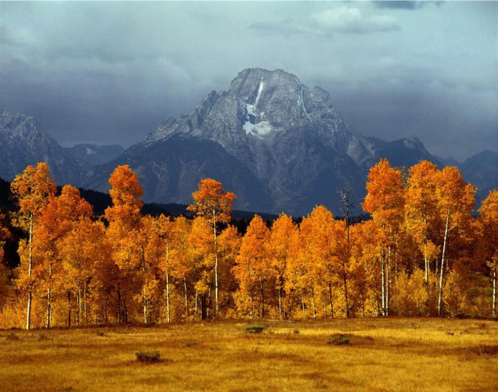 Wyoming's Grand Teton National Park seldom looks better than in the fall. Photo by Ed Cooper. Tweeted by the US Department of the Interior, 10/11/15.