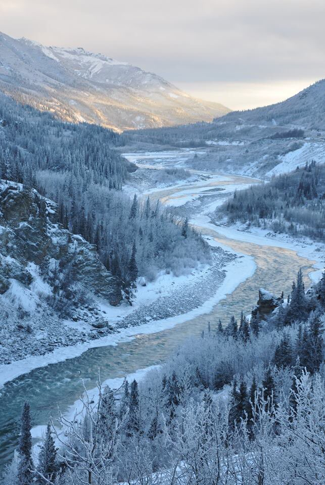 Denali National Park in winter. Tweeted by the US Department of the Interior, 12/8/15.