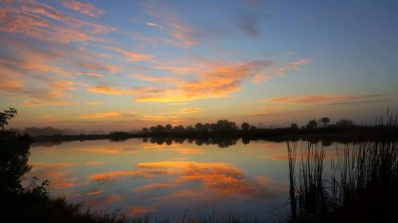 Winter in south Florida means highs in the 70s, making it a great time to visit Big Cypress National Preserve. With over 729,000 acres of freshwater wetlands, Big Cypress is home to an amazing variety of plants and animals, including the rare Florida panther and the iconic American alligator. The sunrise views are also outstanding. Photo by National Park Service. Posted on Tumblr by the US Department of the Interior, 2/1/17.