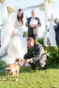 Bride and Groom at the altar. Dog ring bearer. Outdoor garden wedding ceremony. Hillcrest Country Club. Moxie Bright Events.