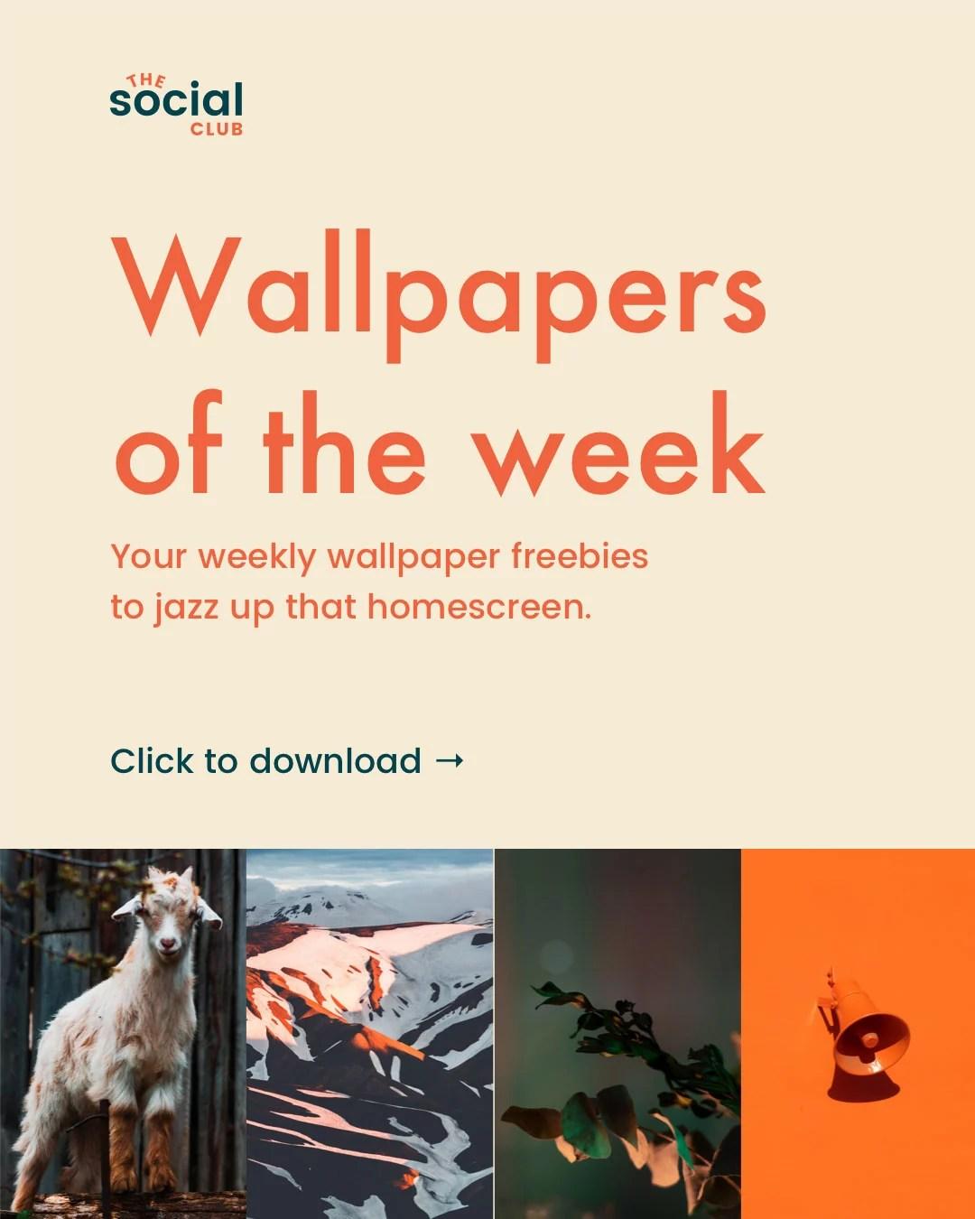 Wallpapers 10 2 download