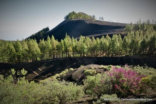 gran canaria paisajes (7)