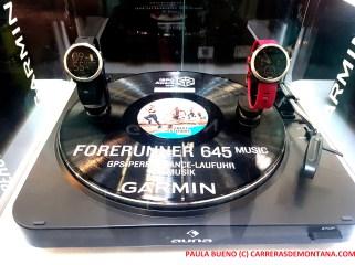 garmin play music F