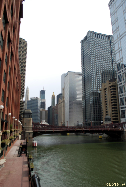 Река Чикаго ривер