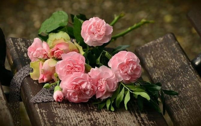 Bouquet of roser foto