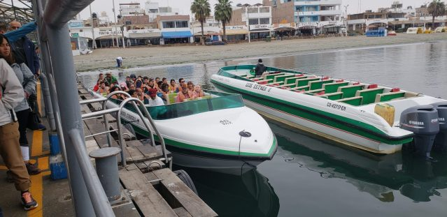 Lots of boat tours to Ballestas Islands in Paracas