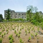 Беренгария – заброшенный отель с привидениями. Отправляемся на экскурсию