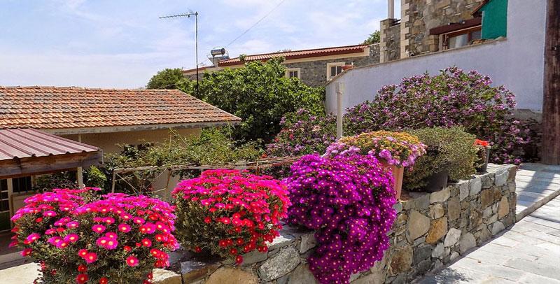 Васа деревня на Кипре